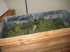 乾燥機は茶箱で保存する